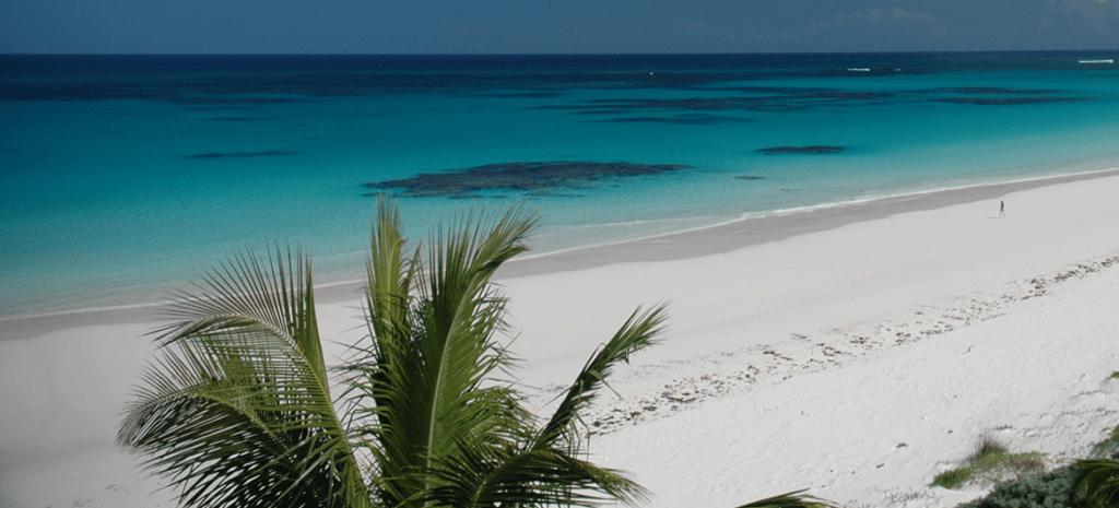 French_Leave_Bahamas